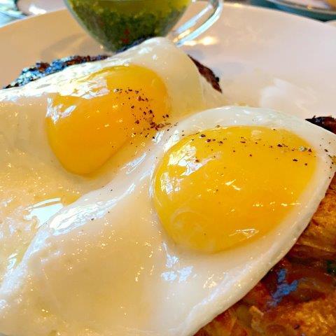 Andiron_eggs